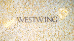 Westwing Group